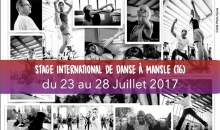 Stage mansle 2017