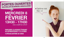 bachelor business angouleme
